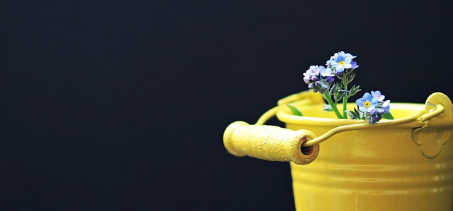 Bucket with flowers - 1st post
